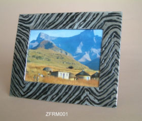 Frame with Zebra design