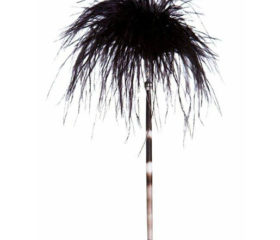 quill pen with ostrich feather